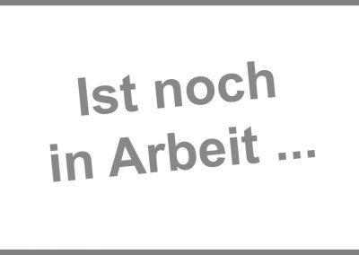 (2015) Die Nachtwache